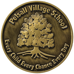 Pelsall Village School Coin